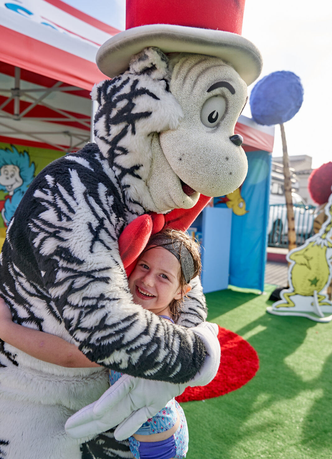 cat in the hat at carnival panorama